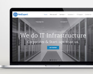 web-design-and-development-for-netexpert-singapore